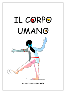 il corpo umano - Apprendendo.altervista.org.index