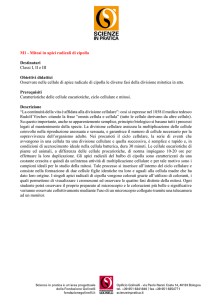 M1 - Mitosi - Scienze in Pratica
