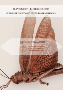 PDF IT - Edible Insects