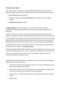 carcinoma prostata classificazione tnmedia