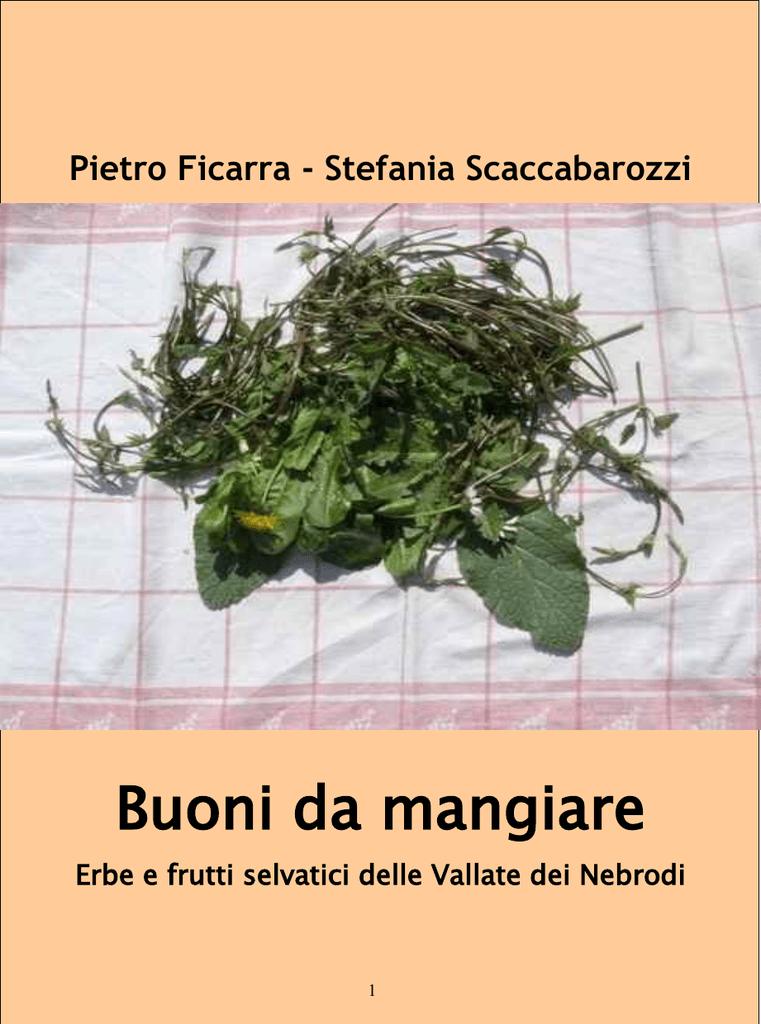 Buoni Da Mangiare Erbe E Frutti Selvatici Delle Vallate Dei Nebrodi