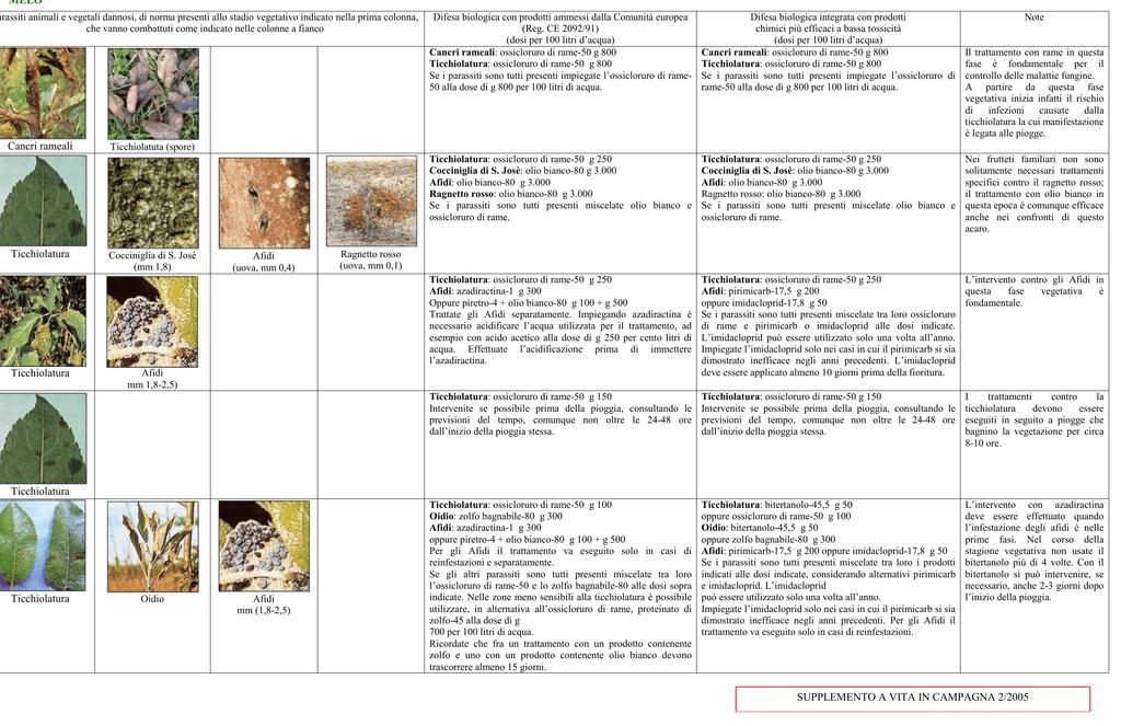 Calendario Trattamenti Frutteto.Calendario Dei Trattamenti Digilander