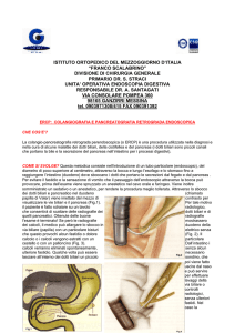 Colangiopancreatografia Retrograda Endoscopica