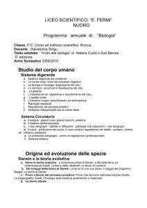 "liceo scientifico ""e"