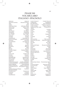 PHASE 300 VOCABULARIO ITALIANO