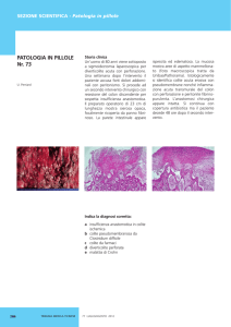 Perriard U,Colite pseudomembranosa da Clostridium difficile, luglio