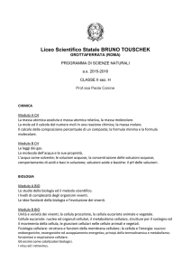 Liceo Scientifico Statale BRUNO TOUSCHEK