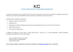 STAGE CONSULENZA IT - INGEGNERIA GESTIONALE