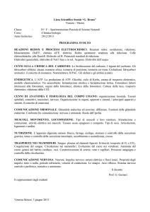 "Liceo Scientifico Statale ""G. Bruno"" - i.i.s. bruno"