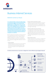 Business Internet Services