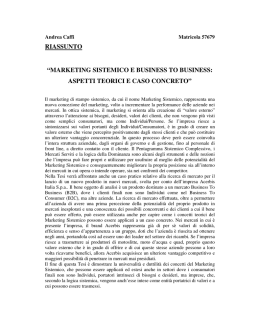"riassunto ""marketing sistemico e business to business"