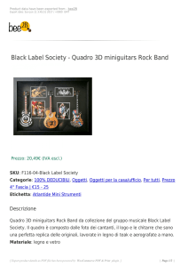 Black Label Society - Quadro 3D miniguitars Rock Band