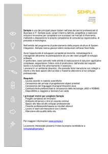 Analista/programmatore java Junior