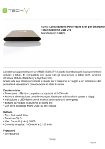 Carica Batterie Power Bank Slim per Smartphone Tablet 5000mAh
