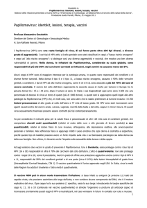 Full text dell`abstract