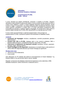 informatica Business Analytics e Database programmazione PL