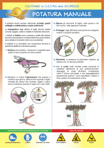 Potatura manuale - Testo Unico Sicurezza