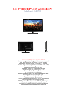 "LED-TV HOSPISTYLE 22"" WIDESCREEN"