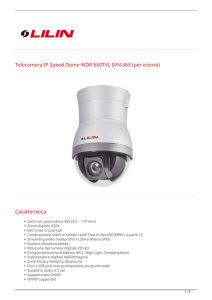 Telecamera IP Speed Dome WDR 650TVL D/N 36X (per interni