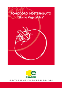 "POMODORO INDETERMINATO ""Home Vegetables"""