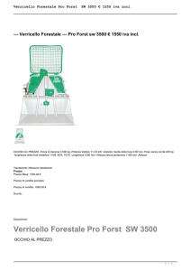 Verricello Forestale Pro Forst SW 3500 € 1550 iva incl.