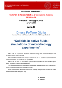 "Dr.ssa Foffano Giulia ""Colloids in active fluids: simulations of"