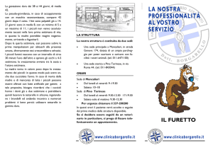 Il furetto - Clinica Veterinaria Borgarello