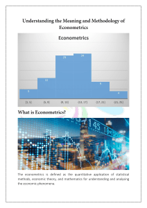 Understanding the Meaning and Methodology of Econometrics