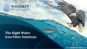 The Right Water Iron Filter Solutions