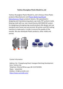 Taizhou Shuanghao Plastic Mould Co.,Ltd.